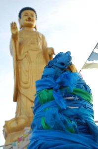 The traditional blue cloth that is found everywhere in Mongolia. I love it!