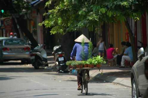 Hanoi - Woman on bike