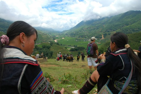 Sapa - Hmong Girls with the Terraced Rice Paddies