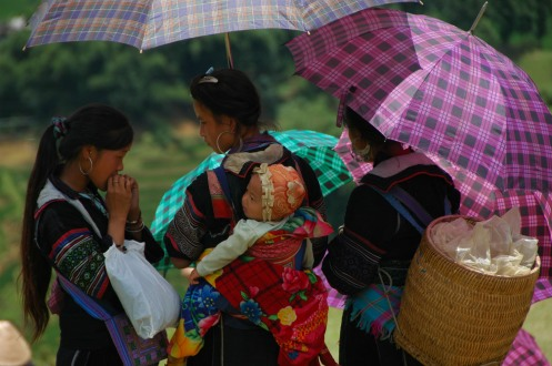 Sapa - Hmong with Their Umbrellas Taking Care of a Baby